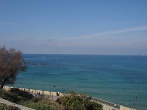 tel aviv plaz