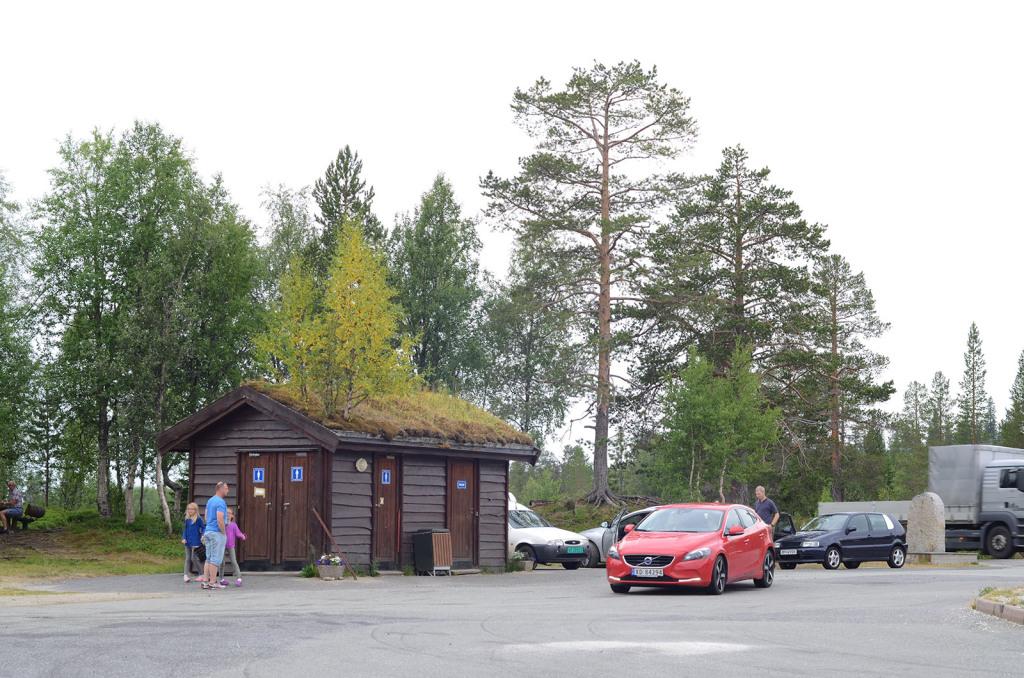 trava na strese na domech v norsku