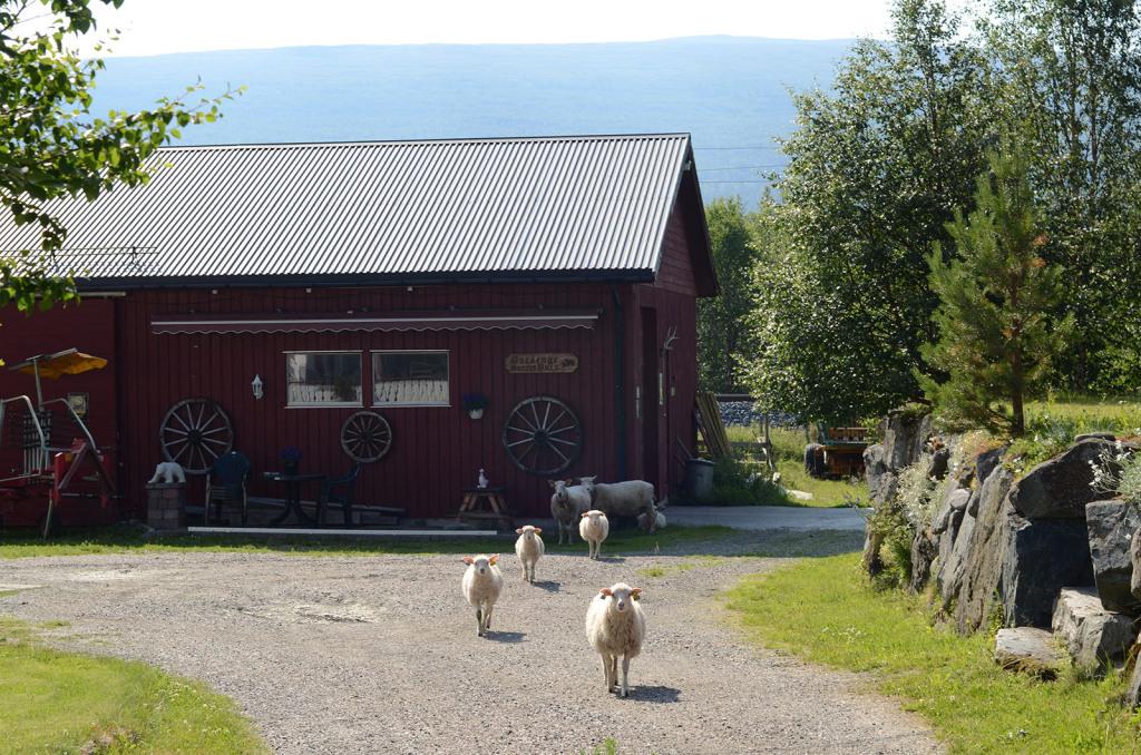 norske zemedelstvi