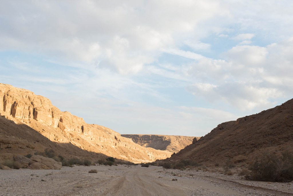 i pustiny