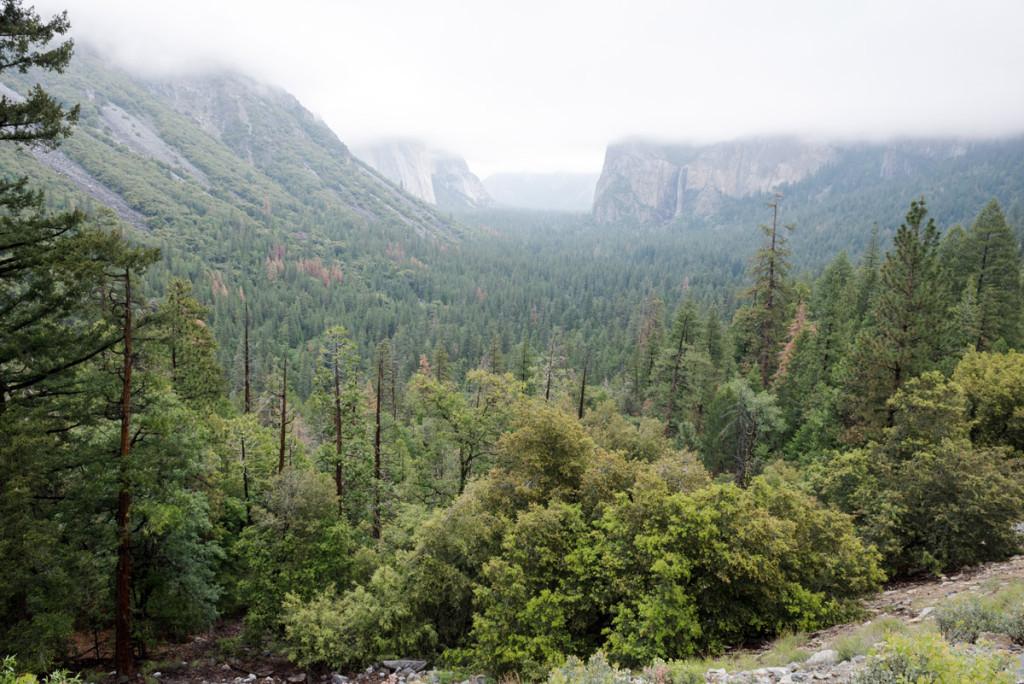 výhled na Yosemitský NP od Tunelu