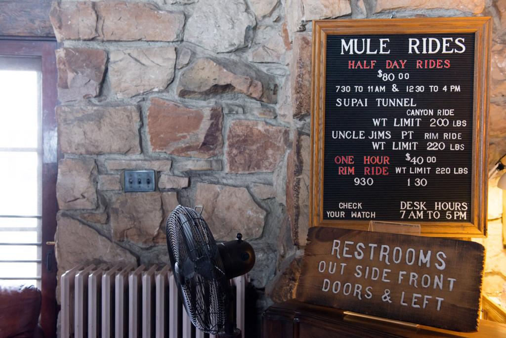 nabídka jízd na mule, Grand Canyon NP