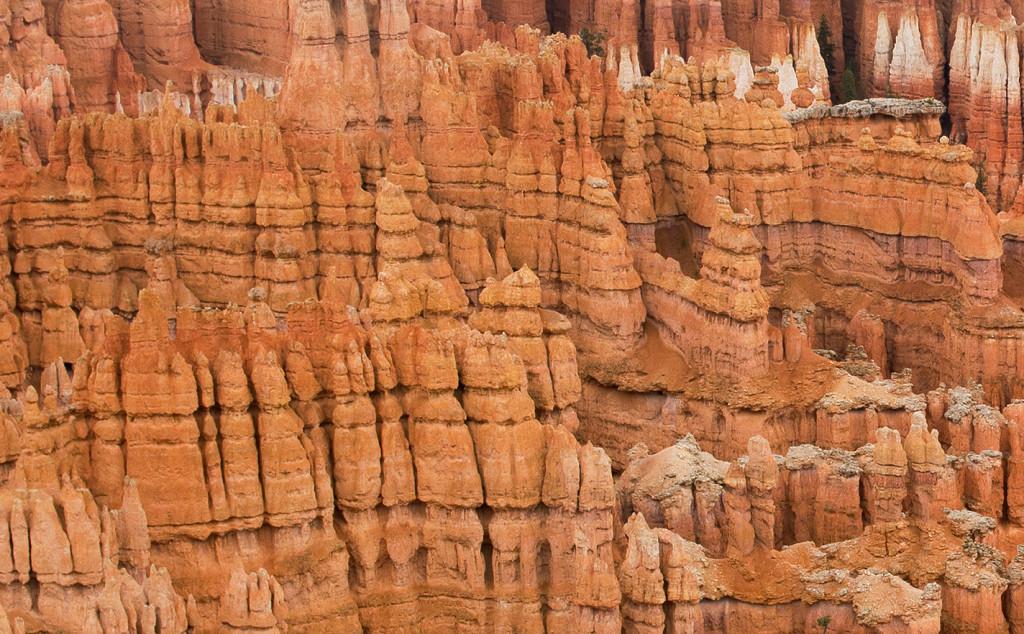 Hoodoos, Bryce Canyon NP