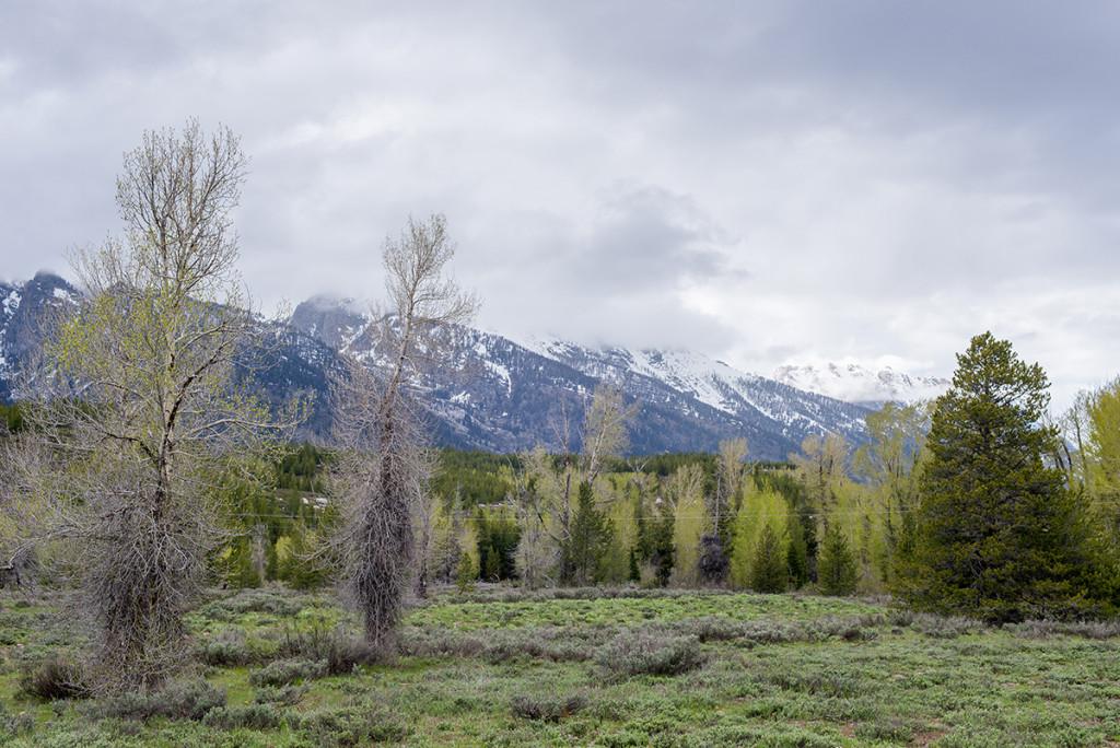 národni park Grand Teton