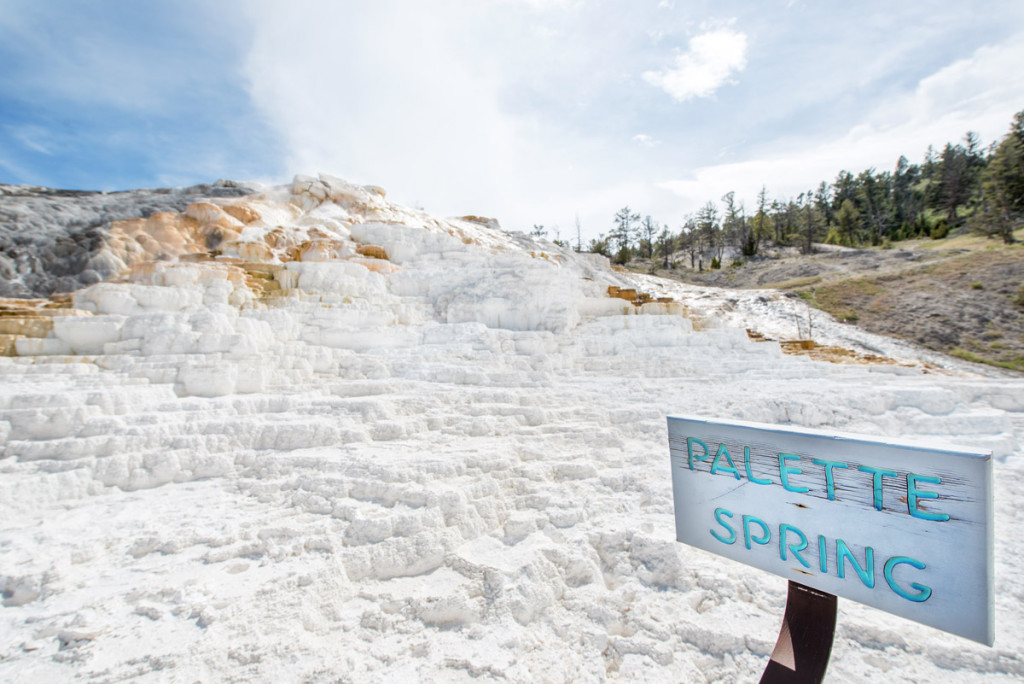 digforfree.com mini yellowstone-mammoth-hot-springs-palette-spring-sign