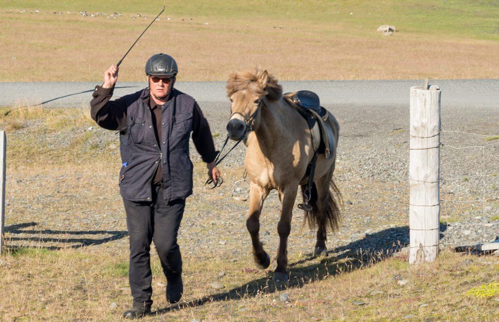 horse-hunter-iceland