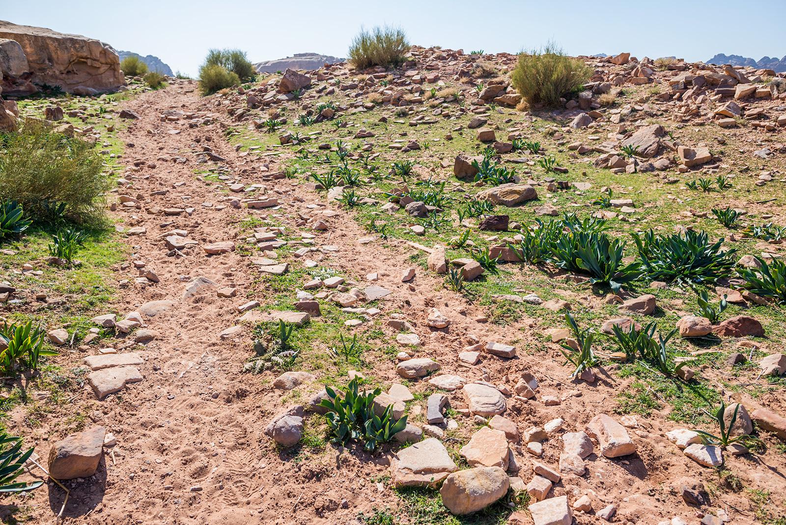 pouštní stezka, Petra, Jordánsko