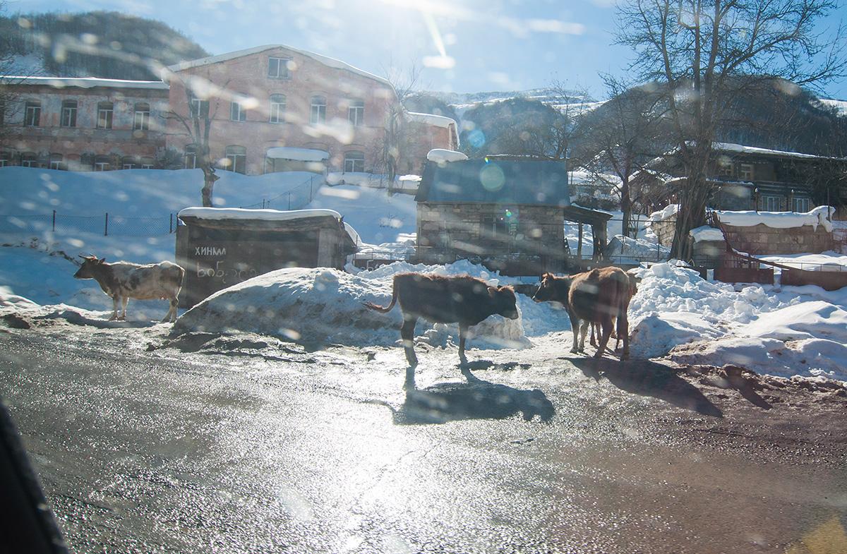 Obyvatelé gruzínských vesnic