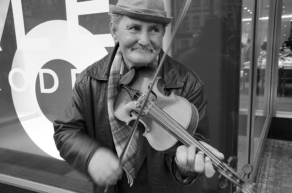 houslista vrzal na vaclavaku