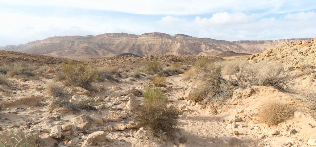 Ramonský krater negev izrel