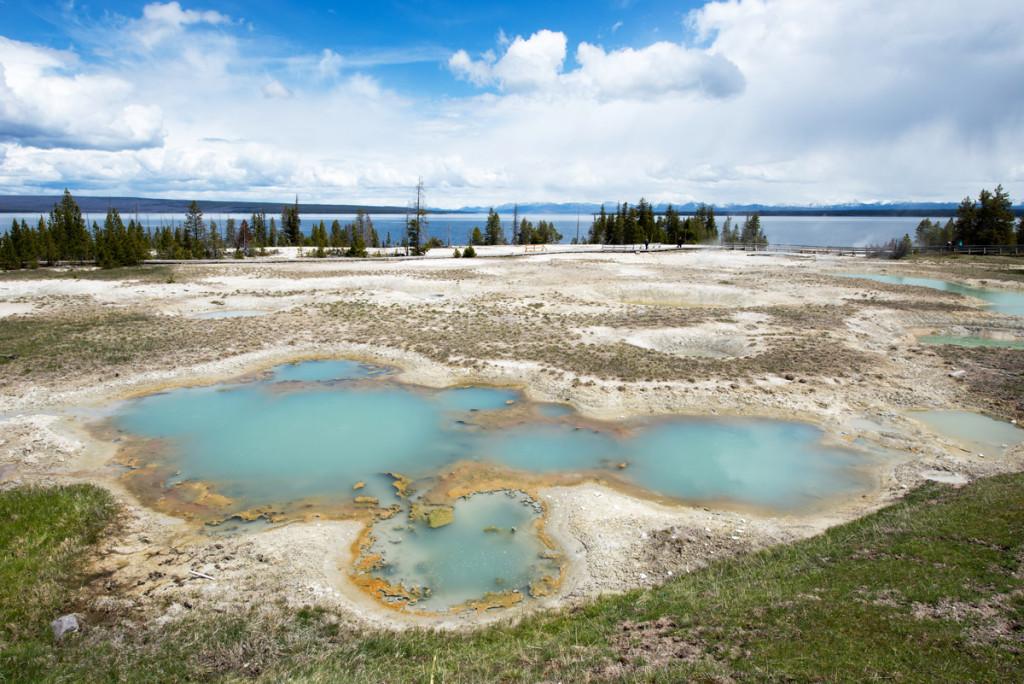 digforfree.com mini West-Thumb-Geyser-Basin-mimulus-pools-supervolcano-yellowstone-national-park