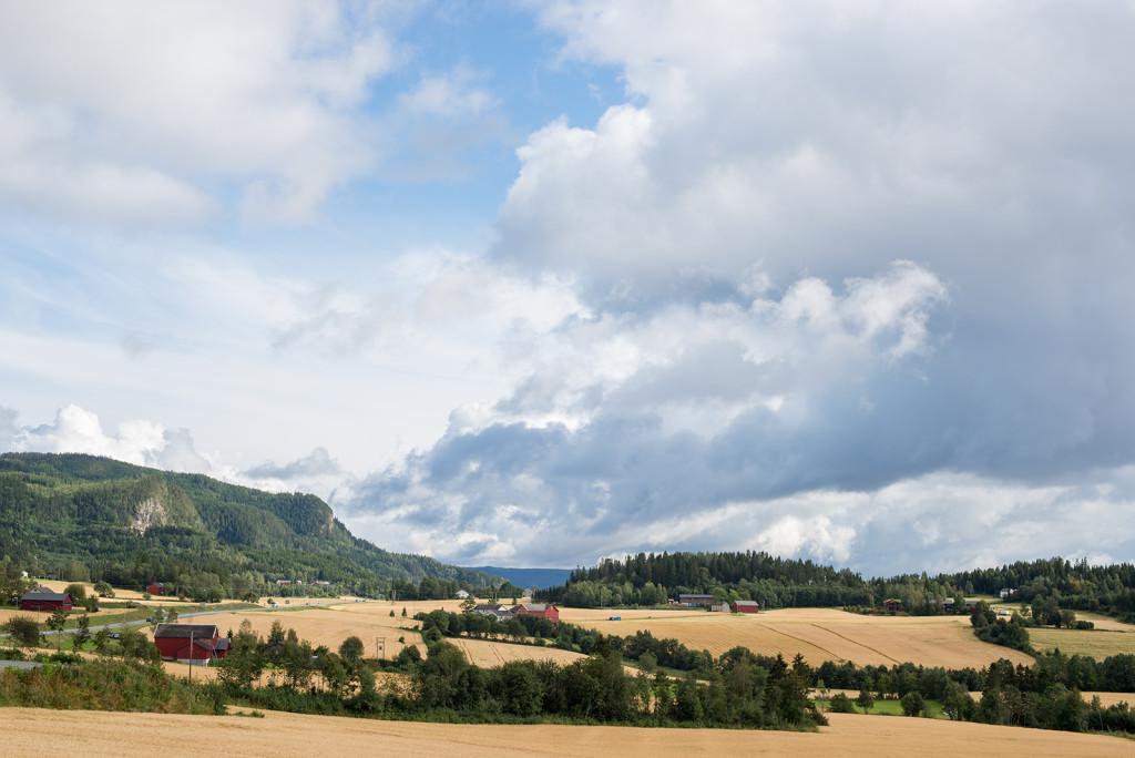 Norská příroda v okolí Trondheimu