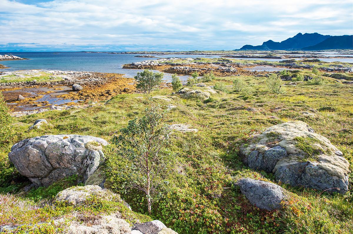 okolí městečka Valberg, Vestvågøya, Norsko