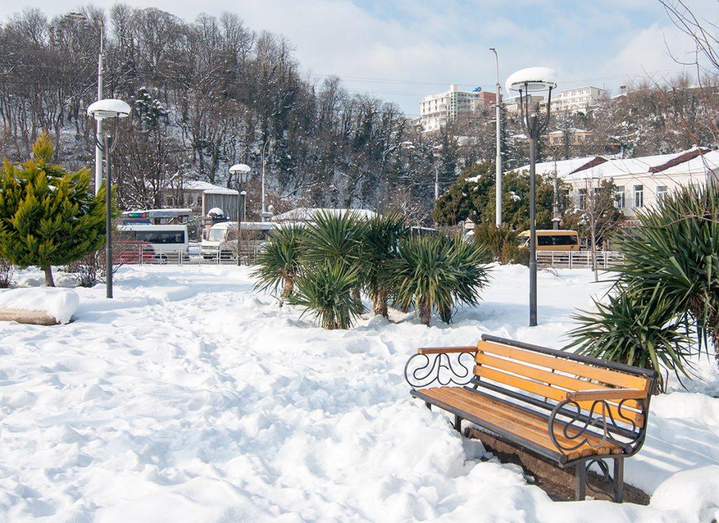 Gruzínský park s palmama pod sněhem