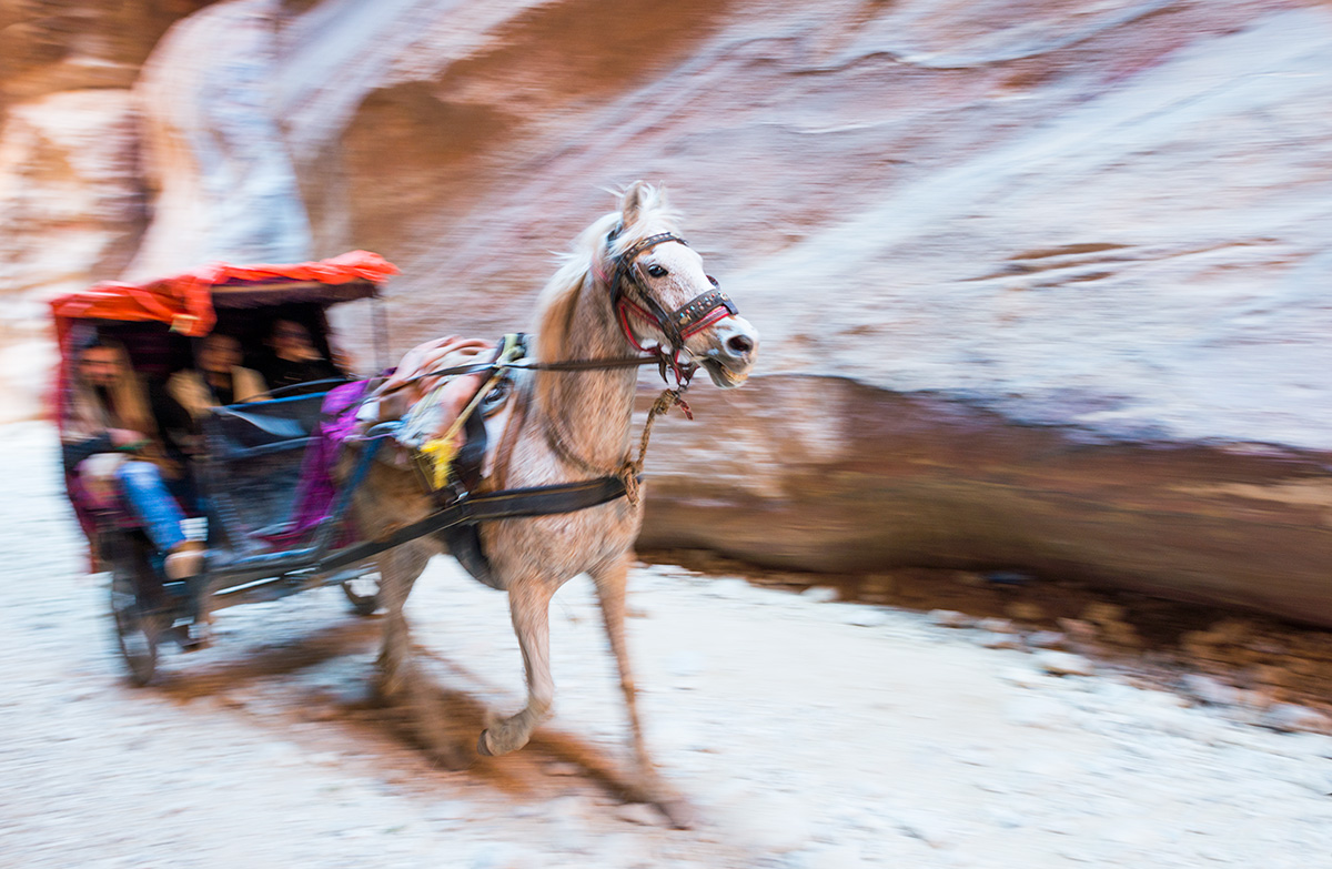 Koňský povoz v Siq v Petře