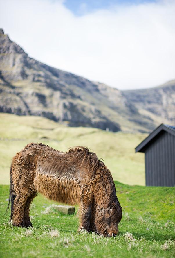 Gasadalur - Faroe Islands